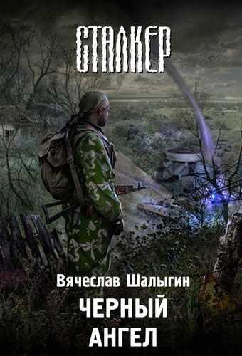 Вячеслав Шалыгин. Черный Ангел (Серия S.T.A.L.K.E.R.)
