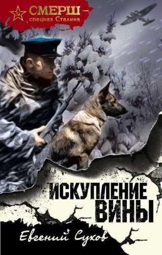 Евгений Сухов. Искупление вины