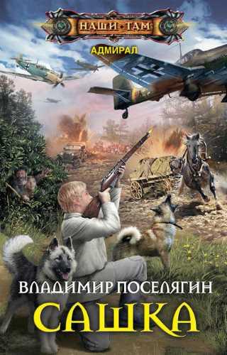 Владимир Поселягин. Сашка