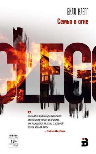 Билл Клегг. Семья в огне