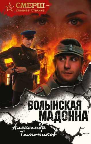 Александр Тамоников. Волынская мадонна