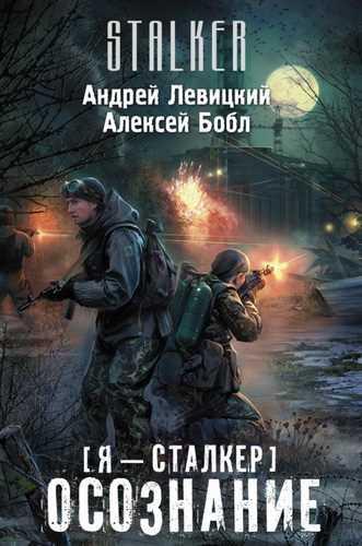 Андрей Левицкий, Алексей Бобл. Я - сталкер. Осознание (Серия S.T.A.L.K.E.R.)