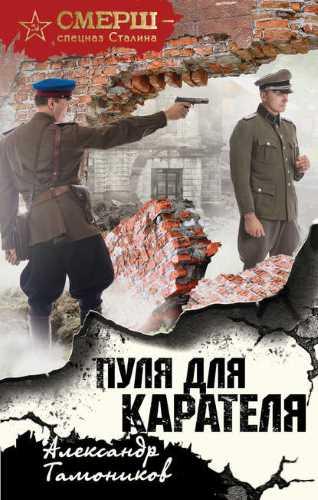 Александр Тамоников. Пуля для карателя