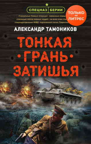 Александр Тамоников. Тонкая грань затишья