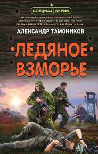 Александр Тамоников. Ледяное взморье